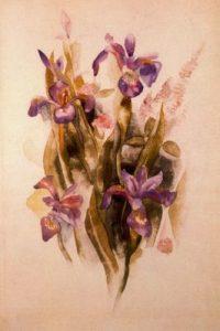 1918. Delphinium. Acuarela sobre papel.